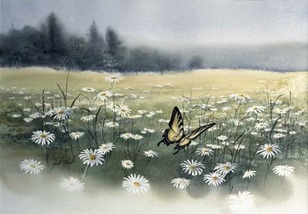 Daisy Field by Joel Ogard art print
