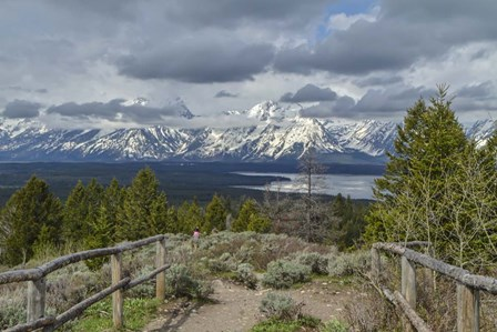Jackson Lake Overlook G by Galloimages Online art print