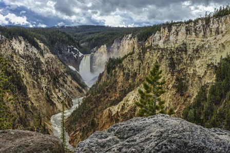 Lower Falls YNP Grand Canyon by Galloimages Online art print