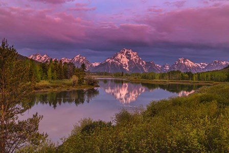 Magenta Sunrise  Oxbow Bend by Galloimages Online art print