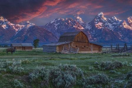 Mormon Row Barn Sunrise by Galloimages Online art print