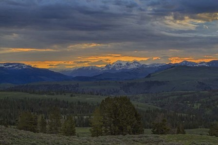 Yellowstone Sunrise by Galloimages Online art print