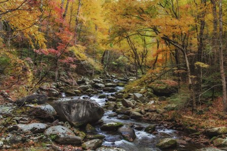 Tremont Stream Watercolor by Galloimages Online art print