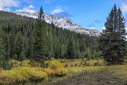 Yellowstone Sbc Landscape by Galloimages Online art print