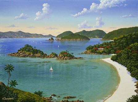 Trunk Bay - Virgin Islands by Eduardo Camoes art print