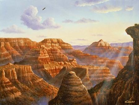 Grand Canyon by Eduardo Camoes art print