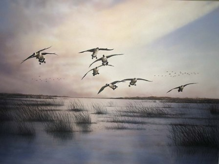 Geese by Clarence Stewart art print