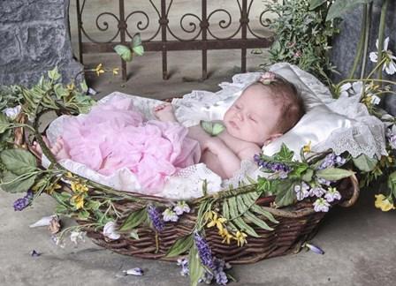 Sleeping Baby by Liz Zernich art print