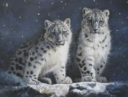 Young Snow Leopards Into the Dark by Pip McGarry art print