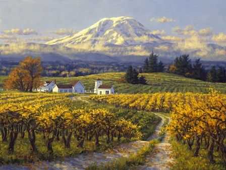 Autumn Vineyards by Randy Van Beek art print
