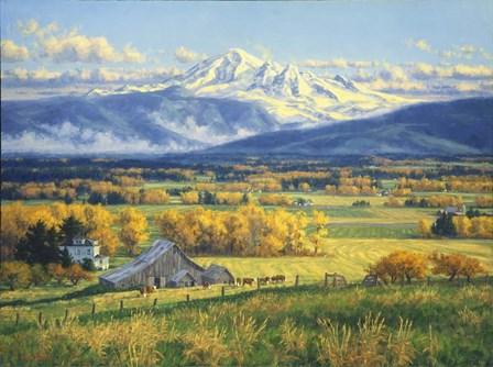 October Gold by Randy Van Beek art print