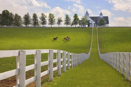 Manchester Farm, Kentucky 08 by Monte Nagler art print