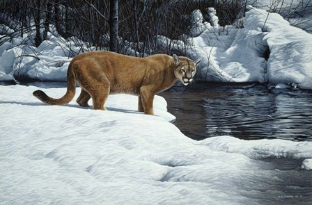 Waters Edge - Cougar by Ron Parker art print