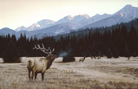 Autumn Meadow by Ron Parker art print