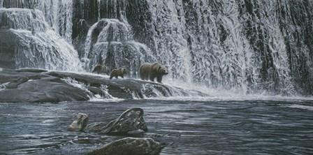 Grizzlies / Falls by Ron Parker art print