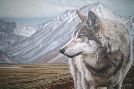 Distant Mountains by Ron Parker art print