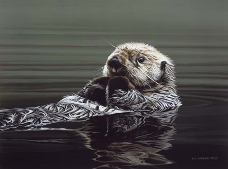Just Resting - Sea Otter by Ron Parker art print