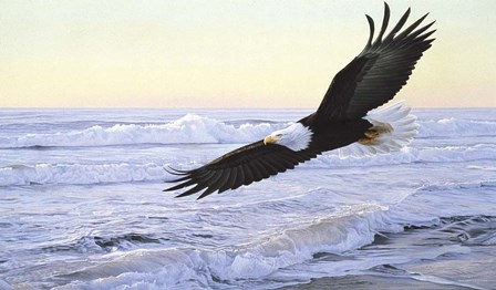 Ocean Dawn- Eagle by Ron Parker art print