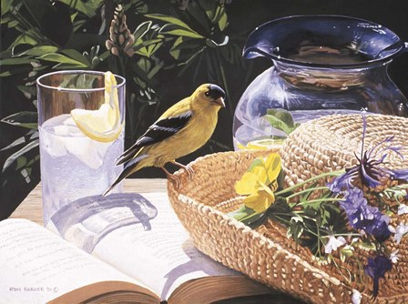 Goldfinch On Straw Hat by Ron Parker art print