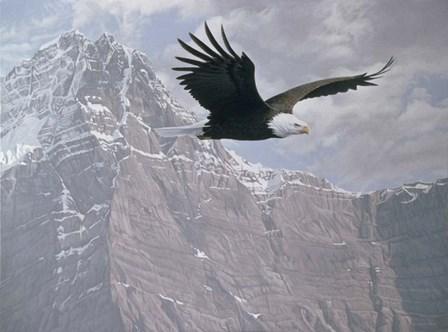 Mountain Flight by Ron Parker art print