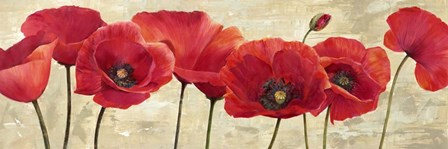Red Poppies by Cynthia Ann art print