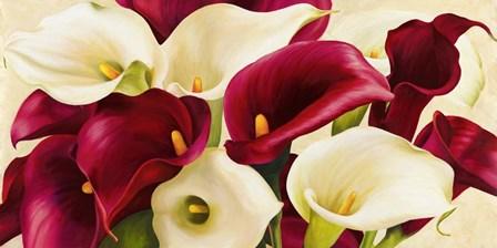 Calla Composition by Serena Biffi art print