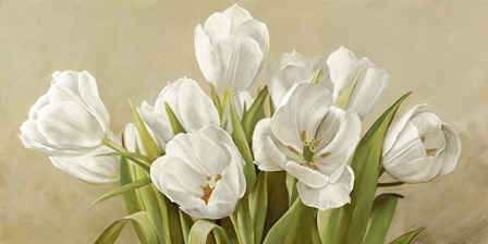 Tulipani Bianchi by Serena Biffi art print