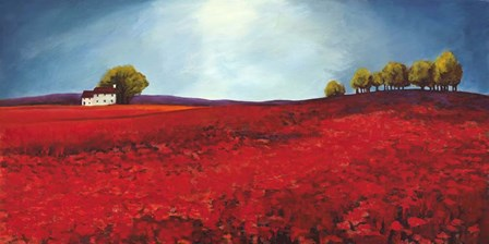 Field of Poppies by Philip Bloom art print
