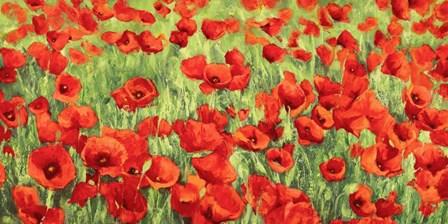 Poppy Field by Silvia Mei art print