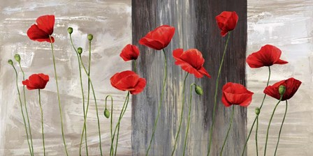 Country Poppies by Jenny Thomlinson art print