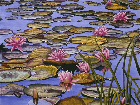 Water Lilies by Thelma Winter art print