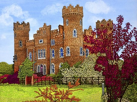 Ireland - Clonyn Castle, Co Westmeath by Thelma Winter art print