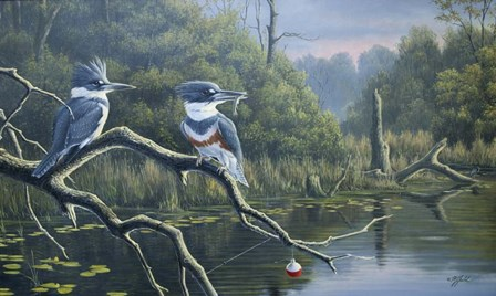 Fisherman's Luck, Belted Kingfishers by Wilhelm J. Goebel art print