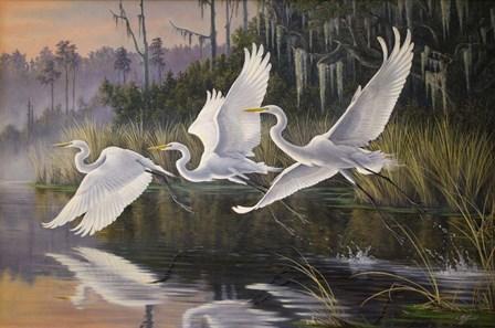 Morning Departure Egrets by Wilhelm J. Goebel art print