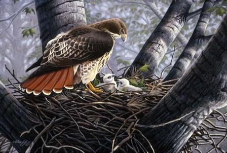 In The Nest by Wilhelm J. Goebel art print