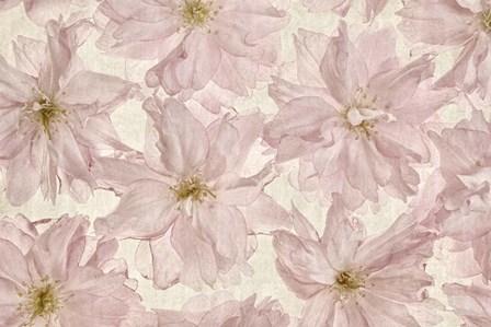 Vintage Blossom by Cora Niele art print