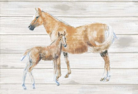 Horse and Colt on Wood by Emily Adams art print