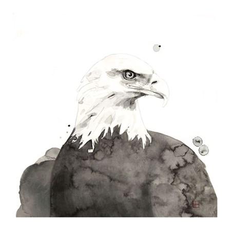 Eagle by Philippe Debongnie art print