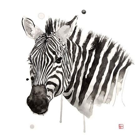 Zebra II by Philippe Debongnie art print