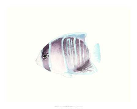 Watercolor Tropical Fish III by Naomi McCavitt art print