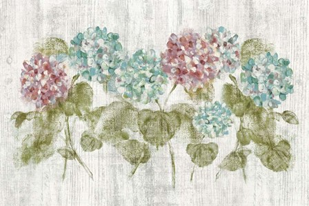 Vibrant Row of Hydrangea on Wood by Cheri Blum art print