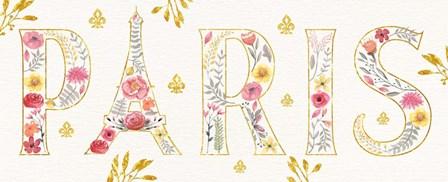 Paris Blooms V by Jess Aiken art print