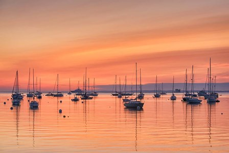 Pastel Harbor by Michael Blanchette Photography art print