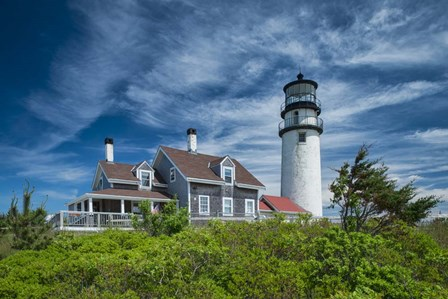 Spring at Cape Cod Light by Michael Blanchette Photography art print