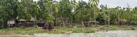 Houses on the Bank of the Sepik River, Papua New Guinea by Panoramic Images art print