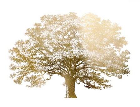 Gold Foil Elephant Tree - Metallic Foil by Vision Studio art print