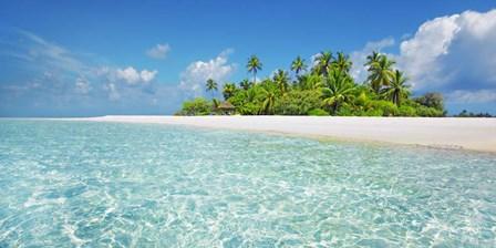 Palm Island, Maldives by Frank Krahmer art print