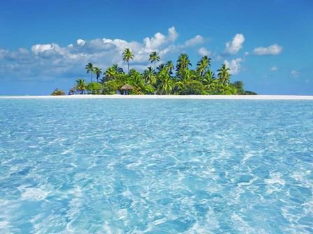 Tropical Lagoon with Palm Island, Maldives by Frank Krahmer art print