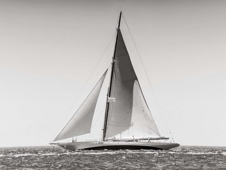 Classic  Racing Sailboat art print
