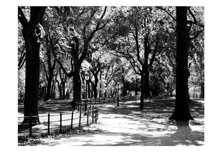 Central Park Walk by Jeff Pica art print